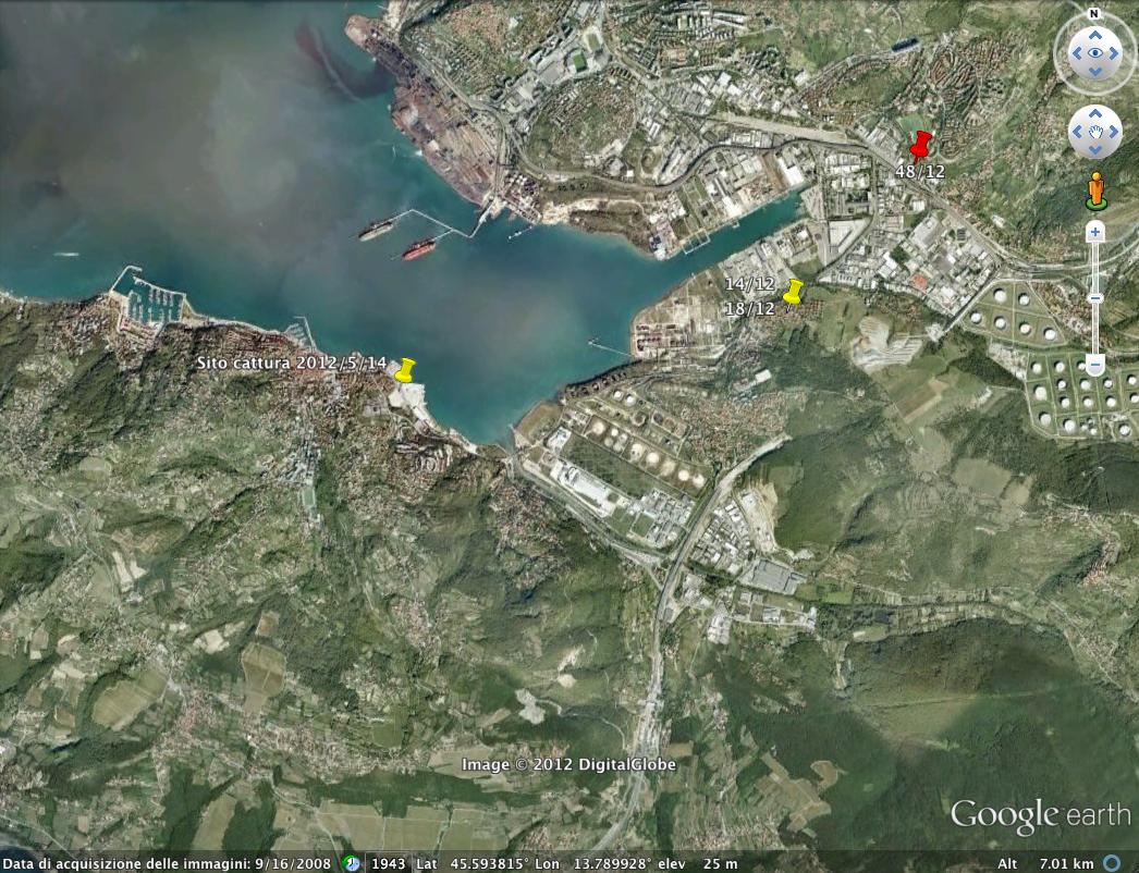 Trieste sud 2012